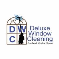 Deluxe Window Cleaner