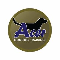 Acer Gundog Training