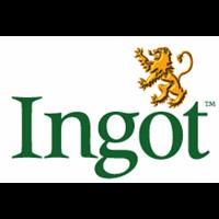 INGOT CANOPY & FAN SERVICES LTD