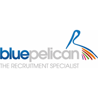 Blue Pelican Group